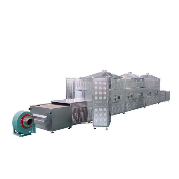 Tunnel-type condiment sterilizing equipment for perfume powder microwave dryer #3 image