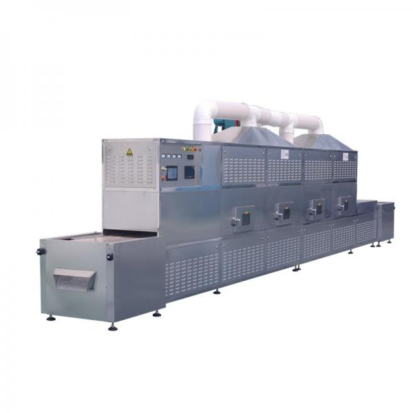 Food Drying Industrial Microwave Equipment Low Energy Selective Heating One #1 image